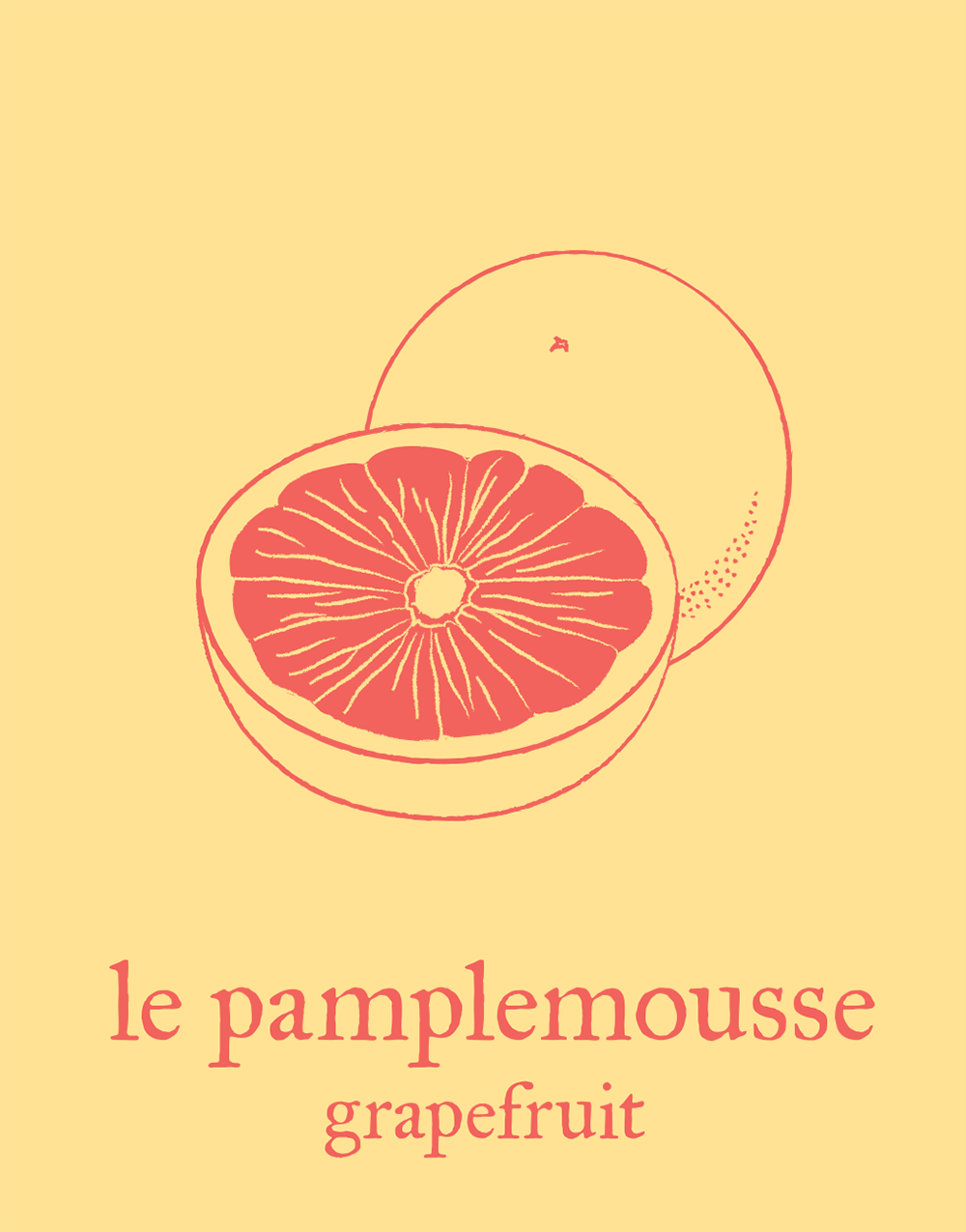 french-flashcard-tshirts/grapefruit.png
