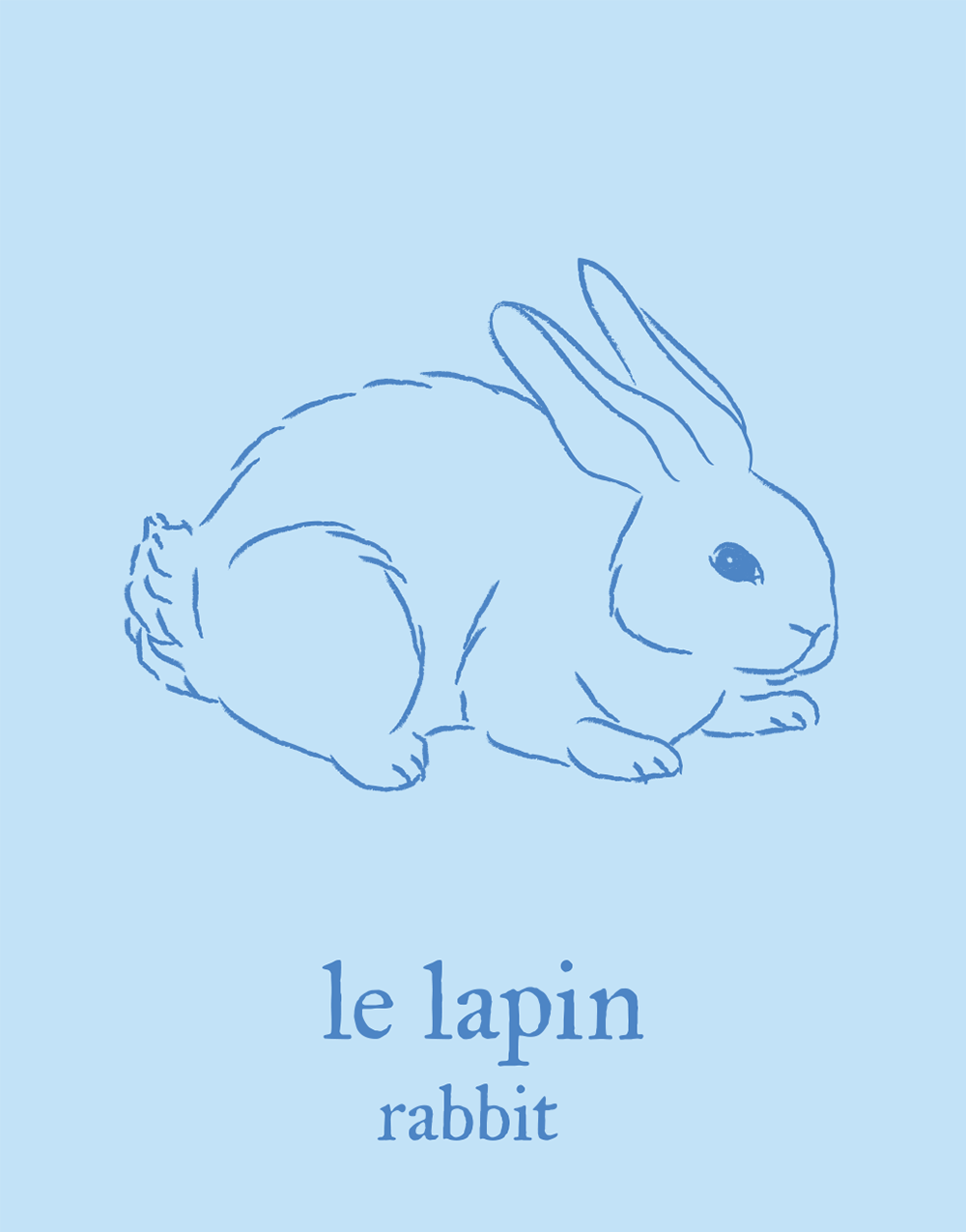 french-flashcard-tshirts/rabbit.png